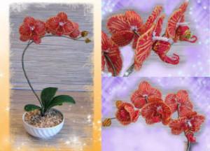 kak-sdelat-orhideyu-iz-bisera2